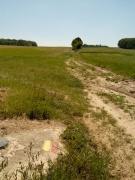 Brabants Plateau omhoog