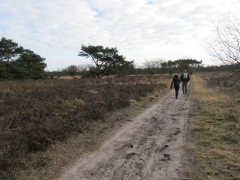 Groote Heide (Ndl)