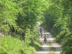 Romeinse Heirweg