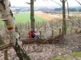 Picknick op Wijngaardberg