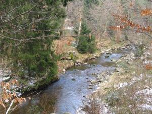 Langs de Hoëgne nabij Pont de Belheid