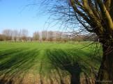 Landschap nabij Wouw