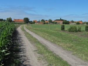 Even buiten de bebouwde kom van Rijkevorsel een mooi plaatje van eendere Kempische hoeves