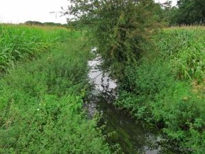 De Visbeek