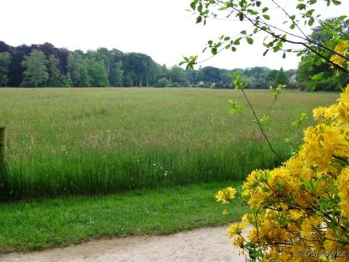 Park Vorderstein