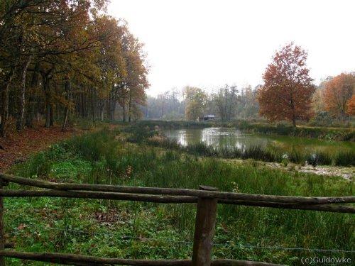 Bosbeekvallei aan de Volmolen
