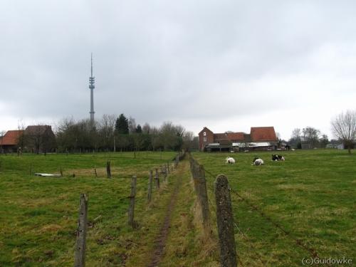 holleken024