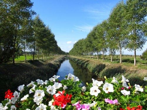 Leopoldkanaal