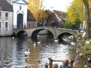 Brugge084